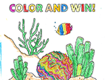 2017 Coloring Contest Winners