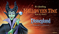 DLR Halloween Time Web Banner 190x110