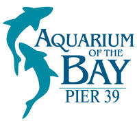 special-discounts-aquarium-by-bay